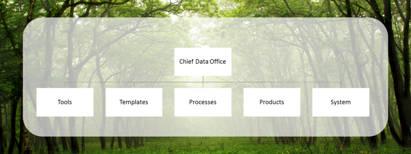 Chief Data Office
