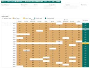 reuben kearney - casual hours dashboard - employee drill down page